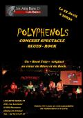 Concert « Blues & Rock Story » by Polyphenols